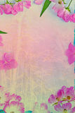 Artistic, natural background with flowers Royalty Free Stock Photography