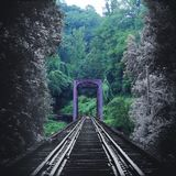 Artistic Nature Photography of a Vintage Train Tracks Bridge Fading in Color into the Forest. Woods Royalty Free Stock Images