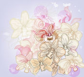 Artistic orchids composition Stock Photography