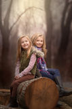 Artistic outdoor portrait of two blond girls sitting on a log of tree in a woods Stock Image