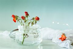 Artistic photo of beautiful rose in a vase on a marble table. Na Royalty Free Stock Photography