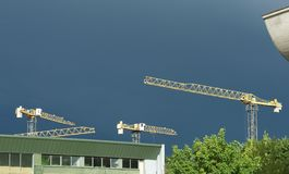 Artistic photo of cranes in dramatic sky background. Cranes Stock Photo