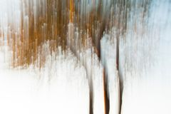 Artistic photography of a tree using the painting-effect, by long shutter speed royalty free stock photos