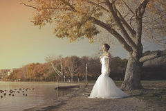 Artistic picture of bride in wedding gown Stock Photo