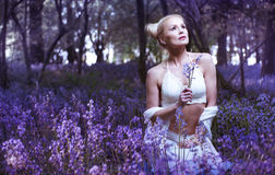 Artistic portrait of a girl in a bluebell forest Stock Images