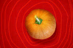 Artistic pumpkin Stock Images