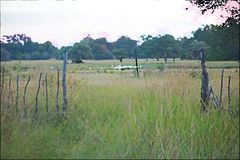 ARTISTIC EFFECT ON SCENE OF FENCE IN GREEN GRASS AND RIVER IN THE DISTANCE royalty free stock photos