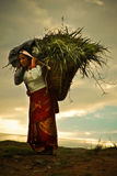 An artistic rendition of a woman carrying grass of the village of Sindhupalchowk after the Stock Image