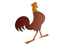 Artistic rooster Royalty Free Stock Image