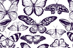 Artistic seamless pattern with morpho menelaus, morpho rhetenor cacica, cethosia biblis, papilio antimachus, alcides