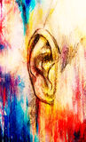 Artistic sketch of face parts, detail of ear, on colorful structured abstract background. Royalty Free Stock Images