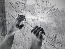 Artistic surreal tortured hands grasping desperately barbed wire. Infrared Royalty Free Stock Photography