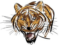 Artistic Tiger face isolated Stock Images