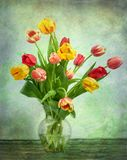 Artistic Tulips on green Royalty Free Stock Images