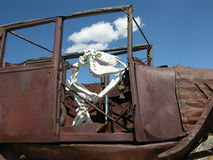 Cow bones driving a rusty jalopy near Great Basin National Park. Artistic, whimsical interpretation of cow bones driving a rusty jalopy near Great Basin royalty free stock image