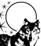 Artistic wolf face in black and white with stars Royalty Free Stock Photos
