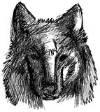 Artistic wolf face isolated Stock Image