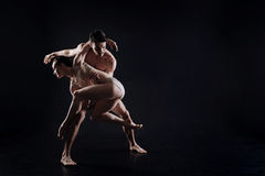 Artistic young gymnasts performing in the studio Stock Photos