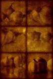 artistical μοντέρνος τρύγος ανασκό Στοκ Εικόνες