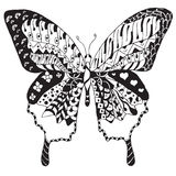 Artistically hand drawn, zentangle stylized butterfly vector, il Stock Image