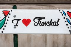 Artistically m?lad tr?b?nk p? Avenida Arriaga i Funchal madeira portugal royaltyfria bilder