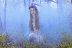 Artistiek die portret van een meisje door rook wordt omringd royalty-vrije stock fotografie