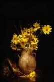 artistiek geel madeliefje   Stock Afbeelding