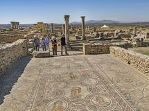 Artistiek Roman Mosaics in Volubilis, Marokko royalty-vrije stock foto