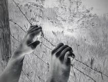 Artistieke surreal gemartelde handen die desperately prikkeldraad begrijpen royalty-vrije stock fotografie