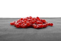 Artistisk mogen röd vinbär för närbild på ett grått stycke av torkduken som isoleras på en vit bakgrund färgrika bär Royaltyfri Foto