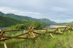 The Artistry of a Natural Fence royalty free stock photo