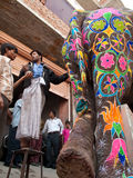 Artists Paint Elephant with bright colors Royalty Free Stock Image