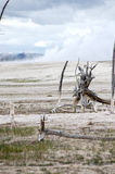 Artists Paintpots Yellowstone National Park, Wyoming Royalty Free Stock Photo