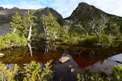 Artists Pool with Cradle Mountain Behind Royalty Free Stock Photography