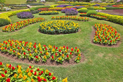 The artly decorated flower beds Stock Image