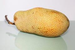 Artocarpus ακέραιος αριθμός ή γνωστός ως αρτόκαρποι ή jackfruit Στοκ φωτογραφία με δικαίωμα ελεύθερης χρήσης