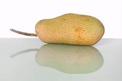 Artocarpus ακέραιος αριθμός ή γνωστός ως αρτόκαρποι ή jackfruit Στοκ φωτογραφίες με δικαίωμα ελεύθερης χρήσης