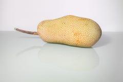 Artocarpus ακέραιος αριθμός ή γνωστός ως αρτόκαρποι ή jackfruit Στοκ εικόνα με δικαίωμα ελεύθερης χρήσης