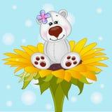 Сartoon Polar Bear Royalty Free Stock Image