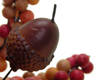 Arts & Crafts:  Acorn & Berries Stock Images