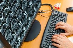 Arts die aan een computer werken Stock Fotografie