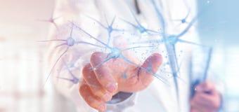 Arts die een 3d teruggevende groep neuronen houden Royalty-vrije Stock Foto