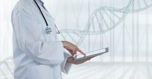 Arts die een tablet met DNA-bundel gebruiken stock fotografie
