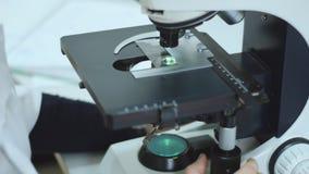 Arts die met microscoop in laboratorium werkt Medische deskundigheid en kenmerkend stock video