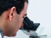 Arts die in Microscoop kijkt Stock Foto