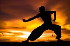 Arts martiaux photo stock