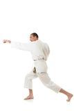 Arts martiaux photos libres de droits