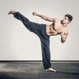 Arts martiaux images libres de droits