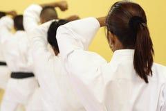Arts martiaux image libre de droits
