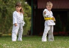 Arts martiaux de karaté images stock